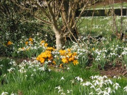 Spring is here at last